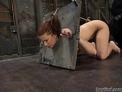 Hogtied - Sarah Blake tied less and made cum all together