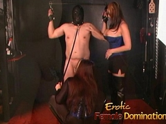 Two stunning busty playgirls take a crack at some fun with a sex-crazed studhorse