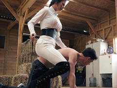Brazzers HD: Horsing Pal up Eradicate affect Irrefutable Boy Jasmine Jae and Jordi El Niño Polla